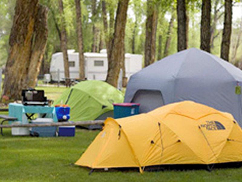 Gunnison Tent Campsites
